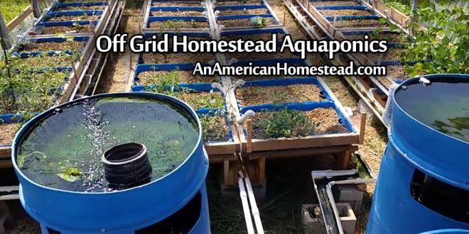 homestead-aquaponics