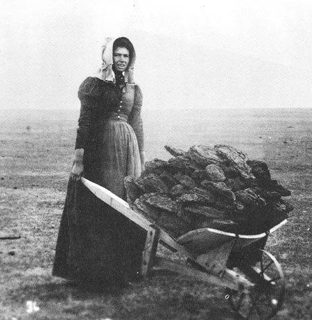 homestead women