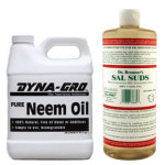 Neem Oil and Sal Suds