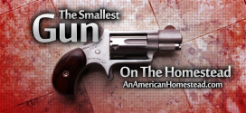 homestead-gun