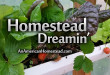homestead-dreamin
