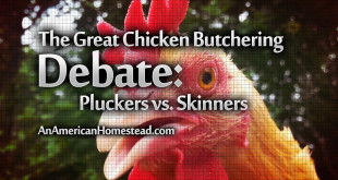 pluckers-vs.-skinners