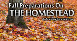 Preparing-for-Fall