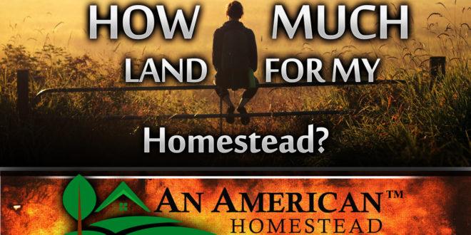 buying-land