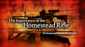 homestead-rifle