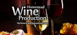 Homestead Wine Production