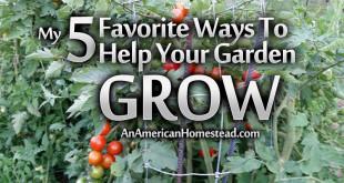 growing-garden