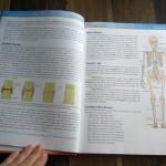 Exploring Creation with Human Anatomy.