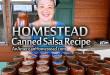 salsa-recipe