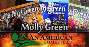mollygreen-homestead