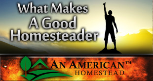 being-a-homesteader