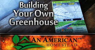 building-greenhouse