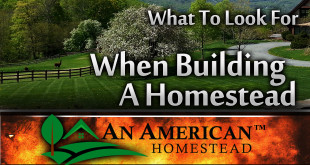 building-a-homestead