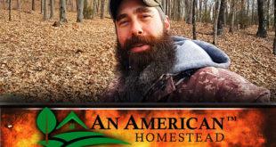 homestead-survival