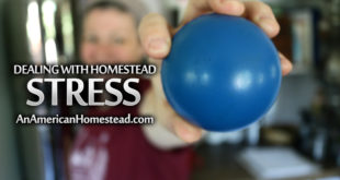 Homesteading-Stress