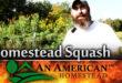 homestead-garden-squash
