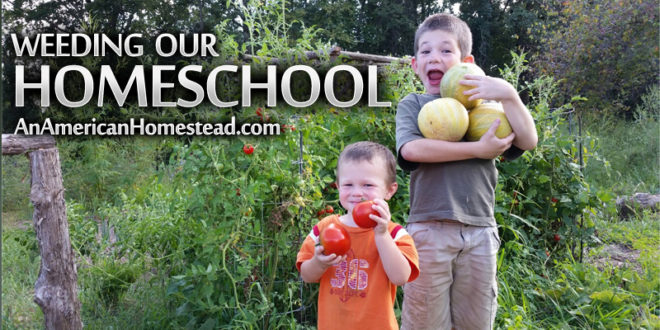 homestead-homeschool