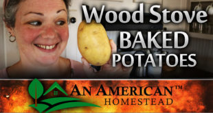 Baking In A Wood Stove