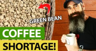 Green Bean Coffee Storage